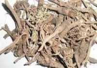 Anacylus Pyretrhrum Root