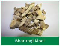 Bharang Mool