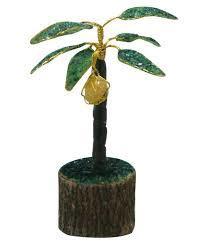 Cocnut Gem Tree