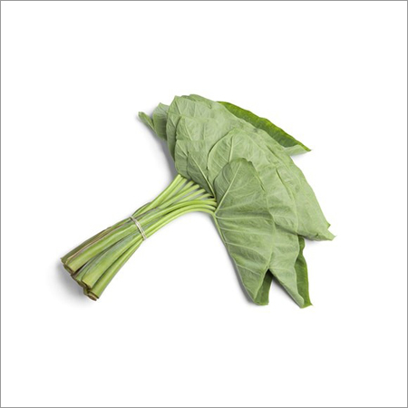 Colocasia Fresh Leaves