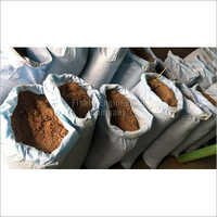 Rendering Plants Process