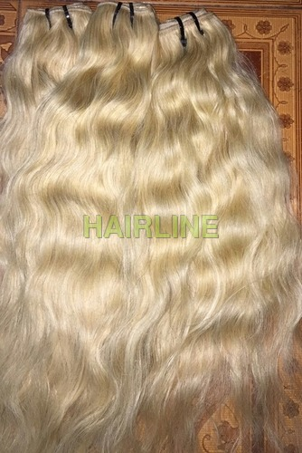 Medium Golden Blond Hair