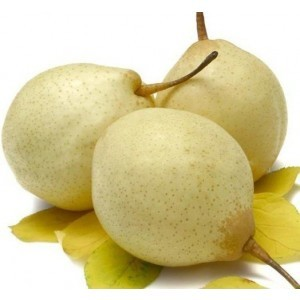 Fresh China Pears