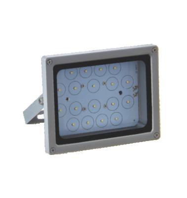 LED Flood Light 25W