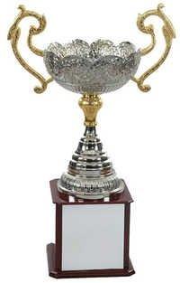 Aluminum Trophy
