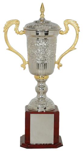 Alumunium Award Trophy