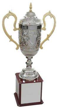 Alumunium Trophy