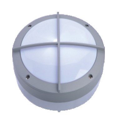 Ceiling Light 12W