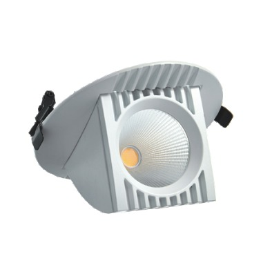 LED Zoom Downlighter 25W