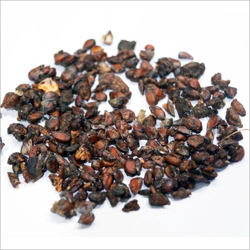 Quince Seed