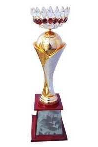 Diamond Trophy