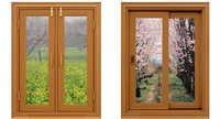 WPC Window