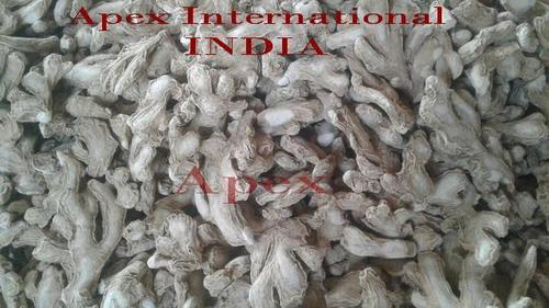 Dried Ginger Root Extract