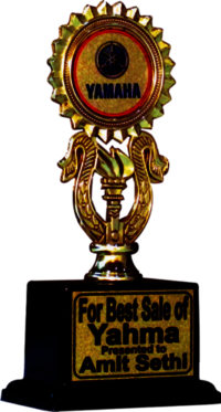 Plastic Fitted Trophy