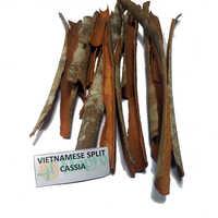 Vietnam Split Cassia