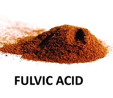 Fulvic Acid