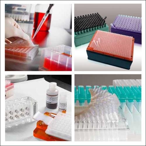 Axygen Genomics & Liquid Handling