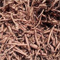Coleus Forskohlii Roots