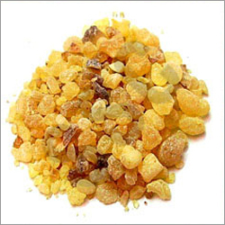 Olibanum Oil (Frankincense)