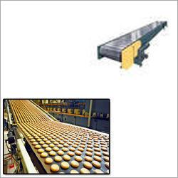 Food Belt Conveyor
