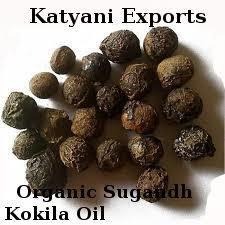Organic Sugandh Kokila Oil