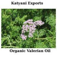 Organic Valerian Oil