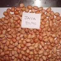 Java And Bold Peanuts
