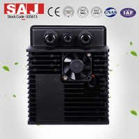 SAJ High Quality Single Phase Pure Sine Wave Inverter 0.55Kw