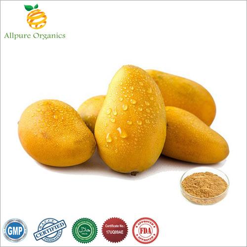 Mango Extract Powder