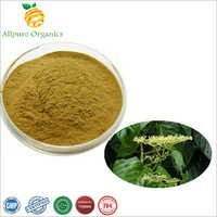 Cissus Extract Powder