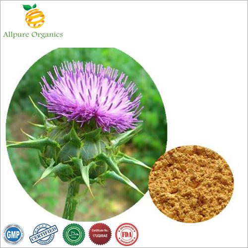 Silymarin Extract Powder