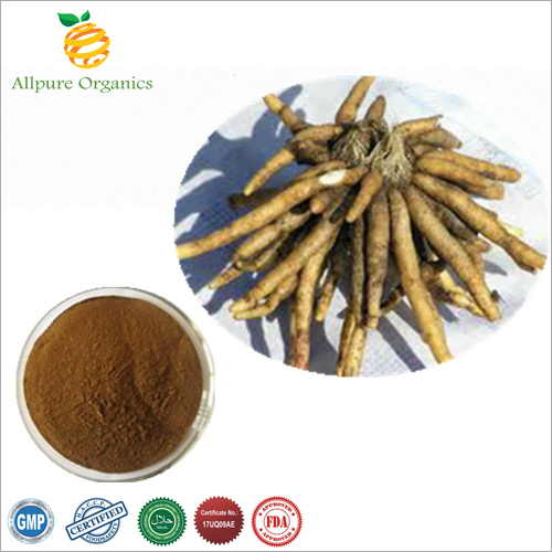 Safed Musli Extract Powder