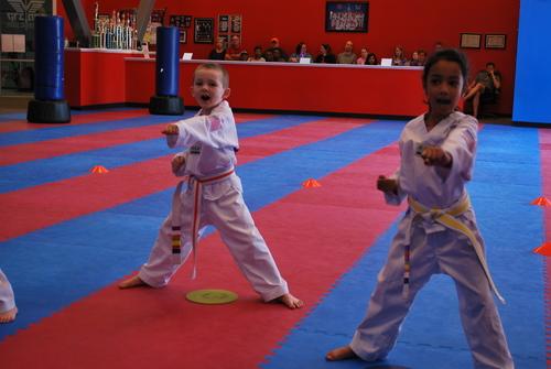 Martial Arts Mats Back Material: Anti-Slip Latex