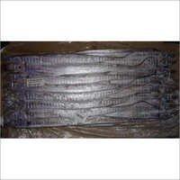 Indian Ribbon Fish