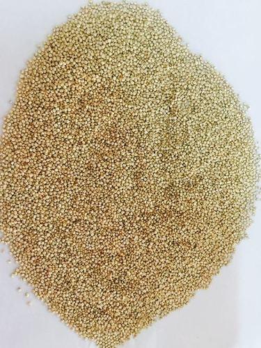 Quinoa Grain/ seeds