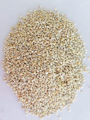 Barley (Pearled)