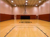 Air Cush Basketball Court Flooring