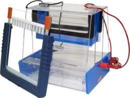 Electrophoresis Unit