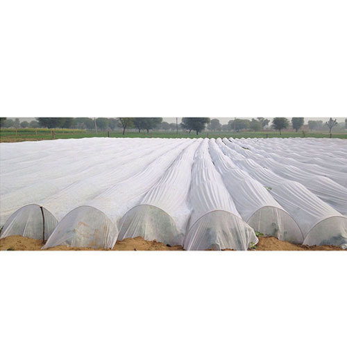 Agriculture Non Woven Cover