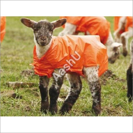 Lammac Polythene Jackets for Lambs