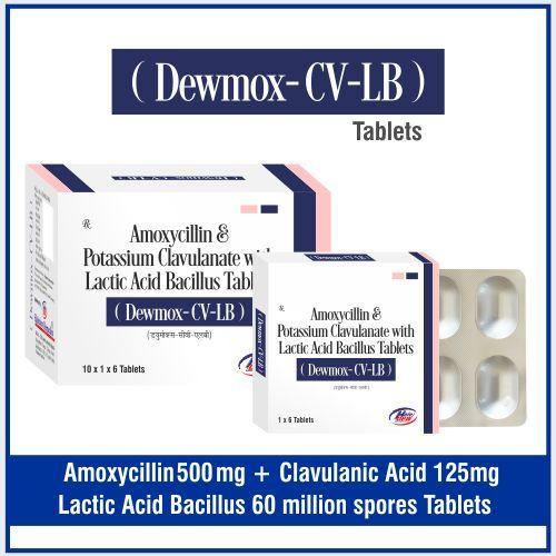 Amoxycillin  500 mg.+Clavulanic Acid  125 mg.+Lactic Acid bacillus 60 million spores