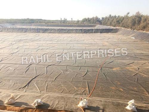 Gujarat Pee Lining