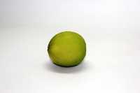 Seed Less Lemon