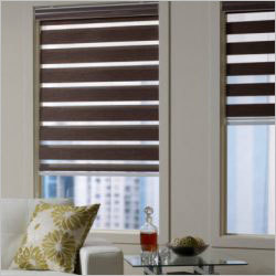 Double Roller Zebra Blinds