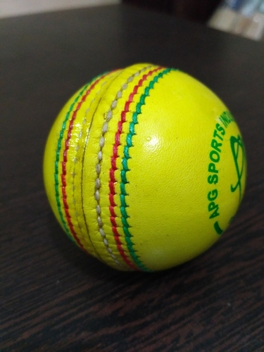 APG Indoor Leather Cricket Ball
