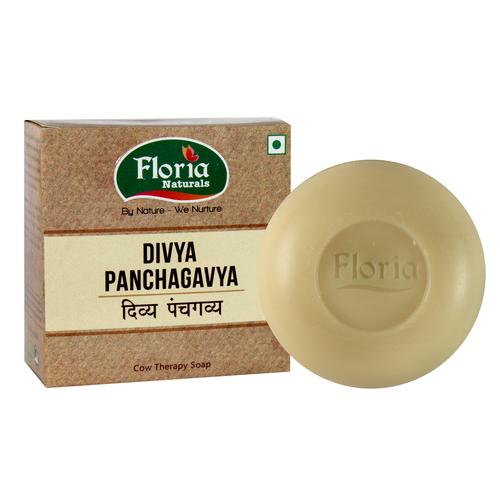 Divya Panchgavya Cowtherapy Soap