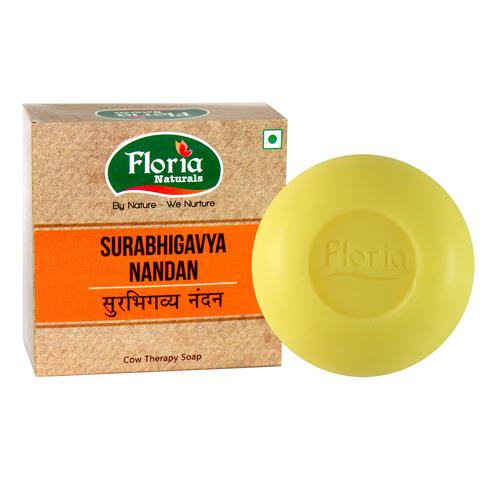 Surabhigavya Nandan Cowtherapy Soap