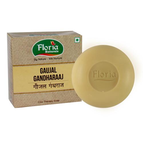 Gaujal Gandhraj Cowtherapy Soap