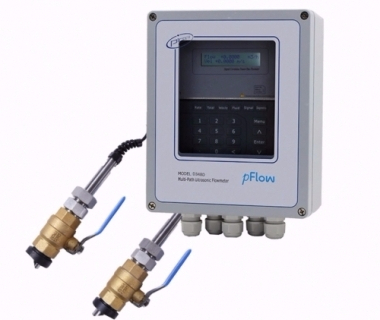 Multipath Ultrasonic Flowmeter D348D Plus