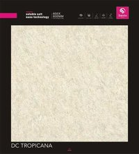 Soluble Salt Vitrified Tiles
